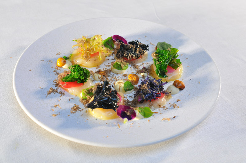 Hand dived scottish scallops%2C kale%2C yuzu%2C meat radishes%2Cperigord truffle low res
