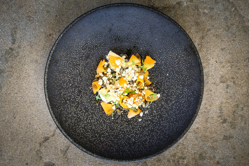 14 10 11 966 Cotehill blue Apricot Pumpkin seed 1