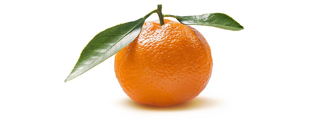 AL012 06 clementine