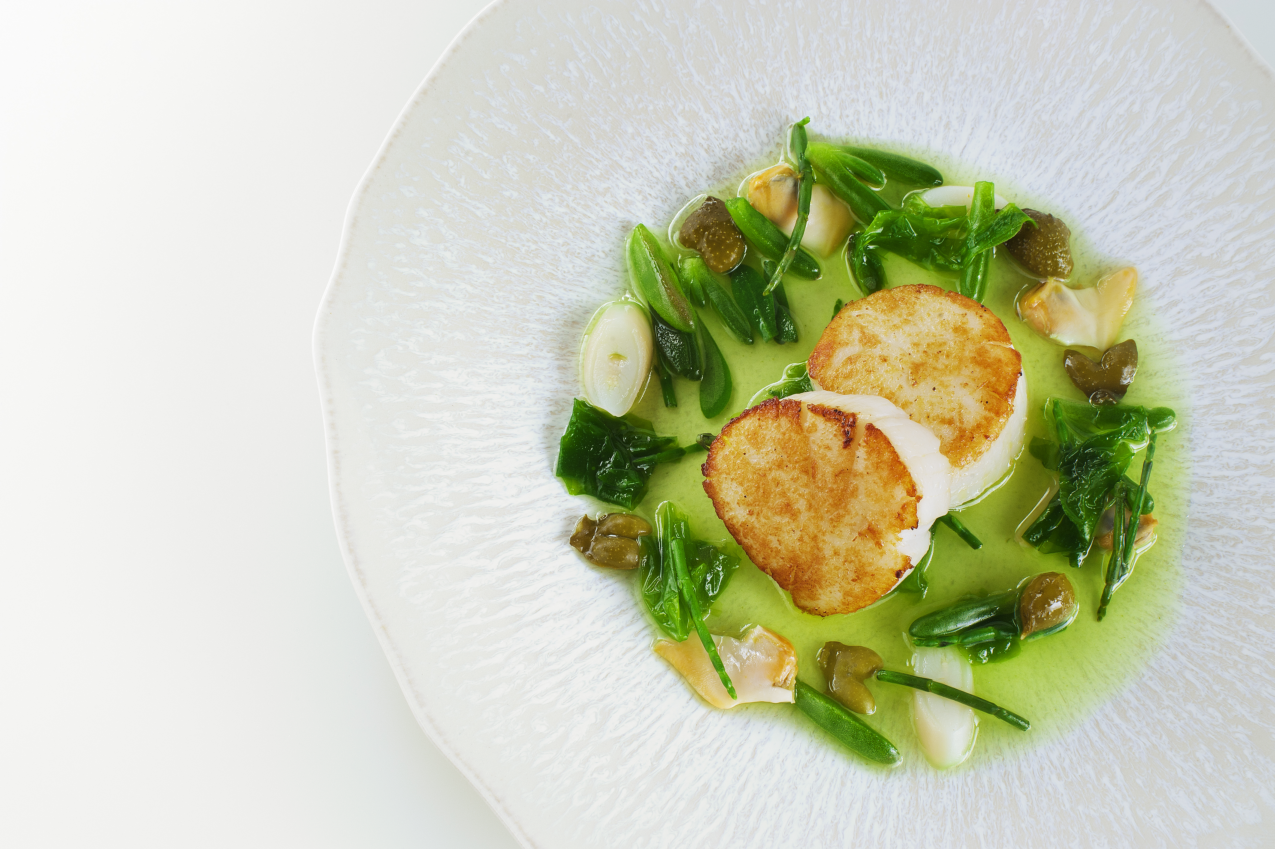 Seared Hand Dived scallop, sea vegetables, clams and seaweed dashi, Restaurant Andrew Fairlie