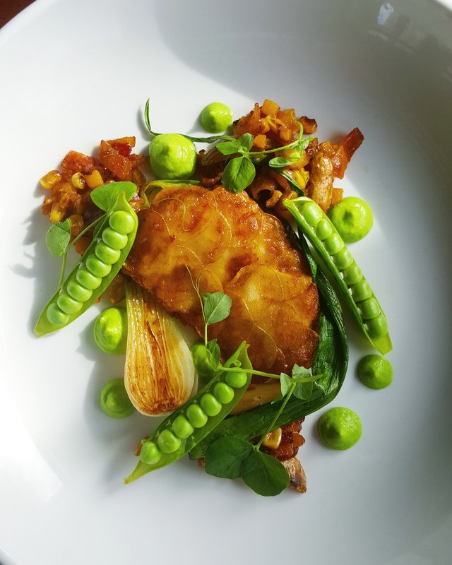 Potato crusted rockfish, fingerling potato, butternut squash, sweet corn andcandied bacon succotasch, roasted spring onion, sweet pea and tarragon puree by chef Zachary Miller, chefs to follow on Instagram, food pics, social media, The Staff Canteen, In