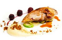 The Pipe and Glass ROAST PHEASANT BREAST%2C PARSNIP PURÉE PARKIN AND PICKLED BRAMBLES
