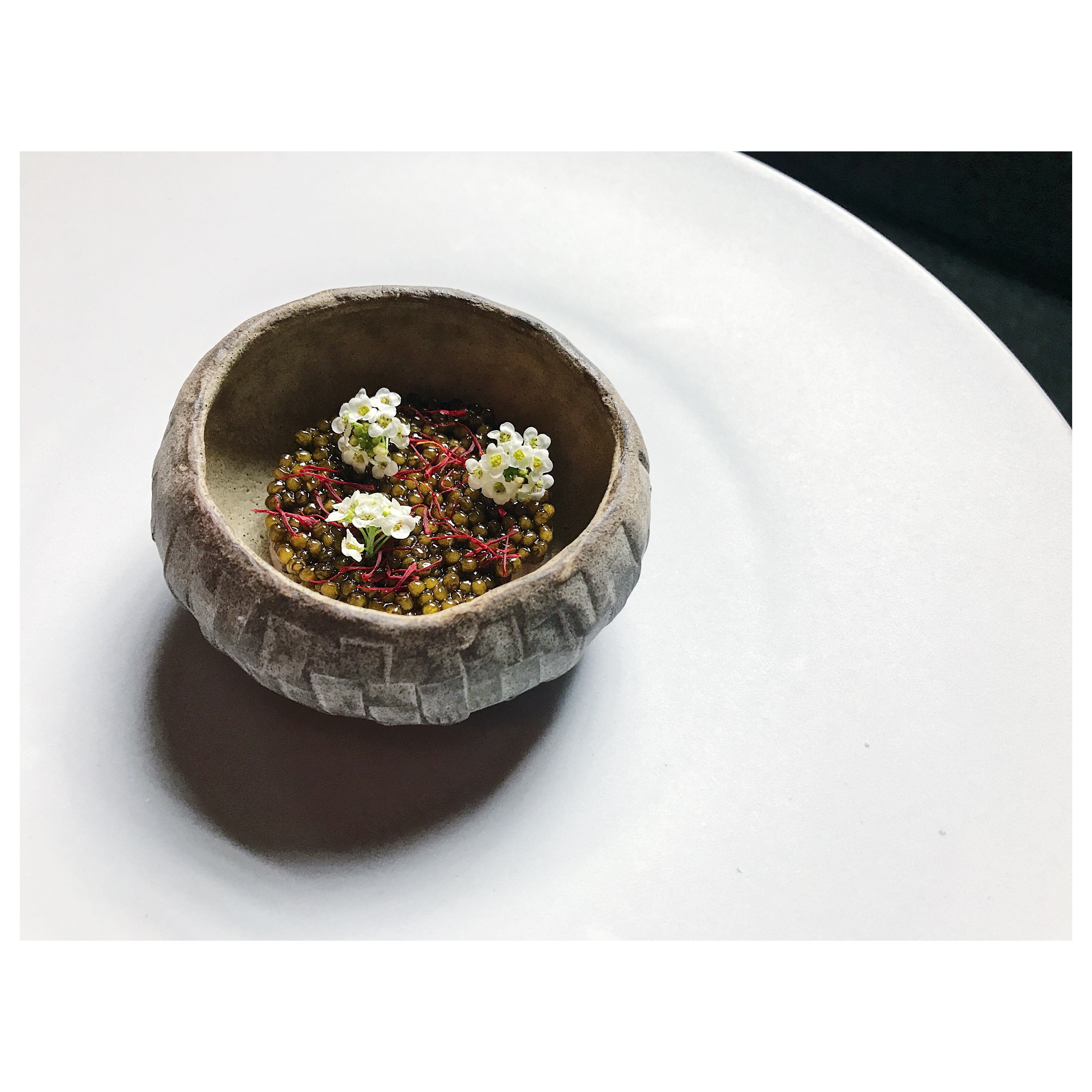 Oriole caviar1