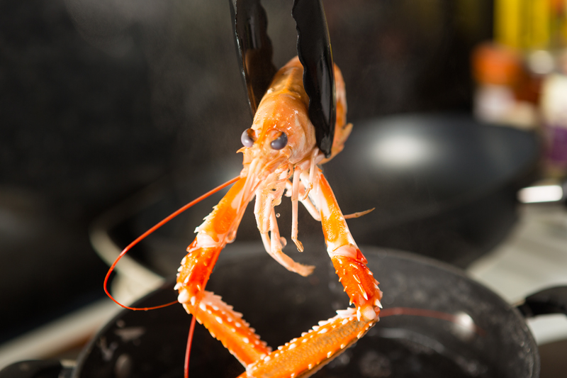 Langoustine   with tongs low res